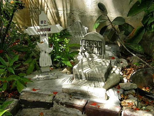 headstones for cats that lived died at the Hemingway House shadows darkening the moss clinging to the carved names and symbols
